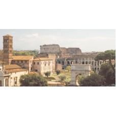 Декор  AXIMA Цезарь D1 25x50
